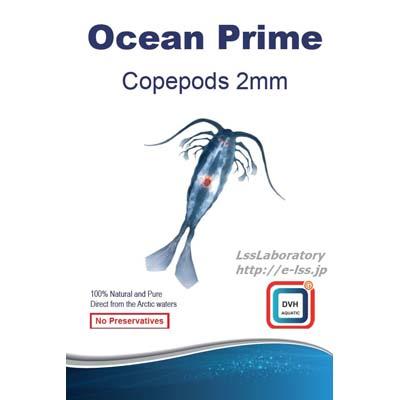 画像1: Ocean Prime Copepods2mm