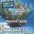 画像2: 【取寄】Grassy Ledio RX201 Marine(海水用) (2)