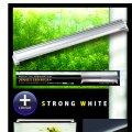 【取寄】ZENSUI LED Plus 180cm ストロングホワイト