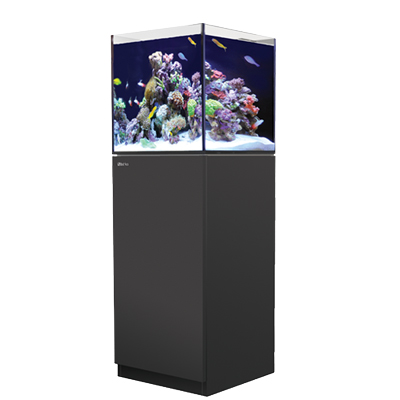 画像1: 【取寄】RedSea REEFER NANO Black(45cm) フランジ付き