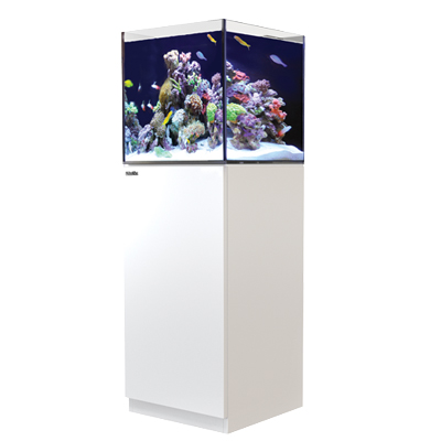 画像1: 【取寄】RedSea REEFER 170 White(60cm) フランジ付き