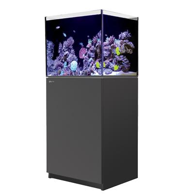 画像1: 【取寄】RedSea REEFER 170 Black(60cm) フランジ付き