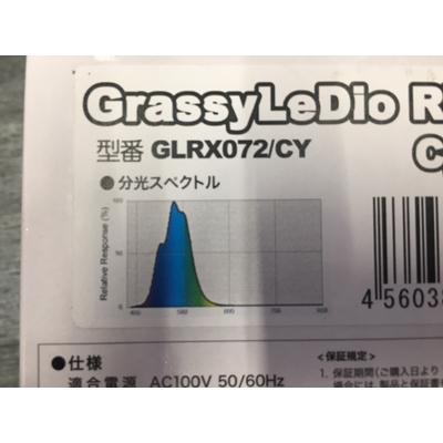 画像2: GrassyLeDio RX072 Cyan