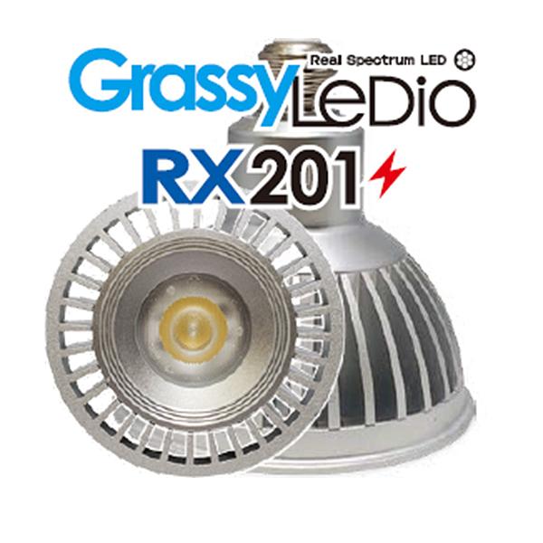 画像1: 【取寄】Grassy Ledio RX201 Marine(海水用)