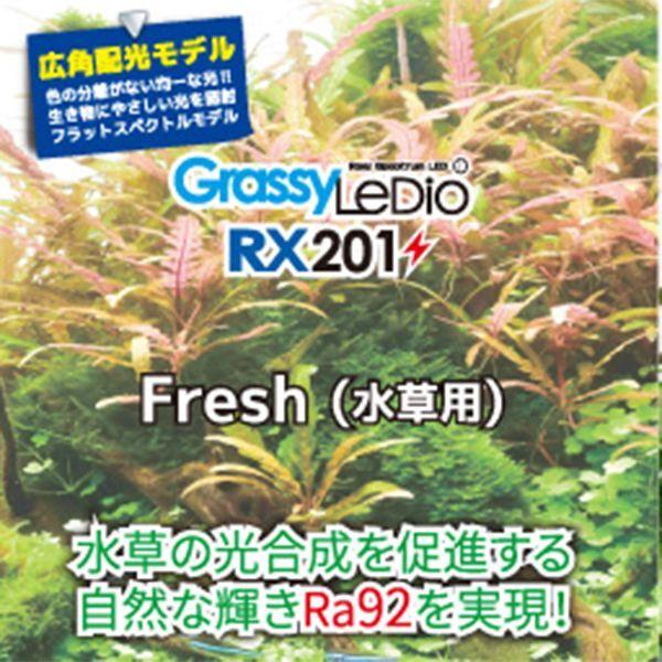 画像2: 【取寄】Grassy Ledio RX201 Fresh(水草用)