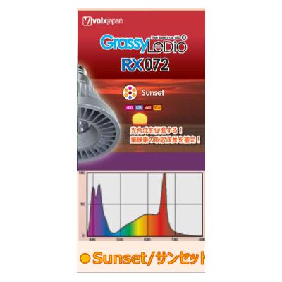 画像1: 【取寄】GrassyLeDio RX072 Sunset