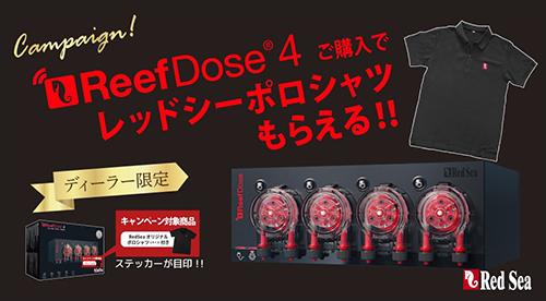 画像2: 【予約】RedSea ReefDose 4 初回予約特典付き