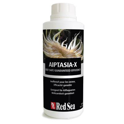 画像1: 【取寄】AIPTASIA-X(アイプタシア-X)詰替え用500ml