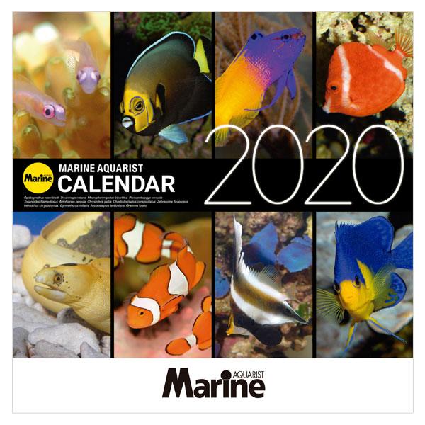 画像1: マリンアクアリストカレンダー2020